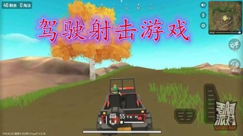 驾驶射击游戏